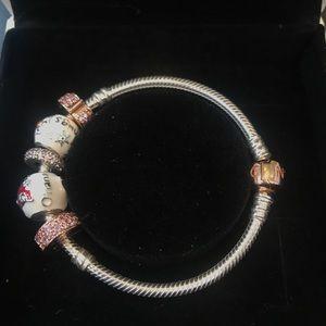 Jewelry - Pandora Charm Bracelet
